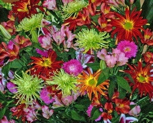 flowers-20883_640